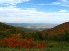 Shenandoah National Park. Virginia