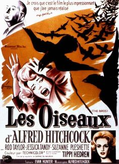 Les oiseaux d' Alfred Hitchcock ! Alfred Hitchcock, Hitchcock Film, Horror Movie Posters, Cinema Posters, Horror Movies, Horror Film, Jessica Tandy, Suzanne Pleshette, Tippi Hedren