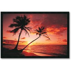 ''Tropical Beach Sunset'' Framed Wall Art (165 CAD) ❤ liked on Polyvore featuring home, home decor, wall art, backgrounds, sunset wall art, horizontal wall art, beach scene wall art, tropical wall art and beach home accessories