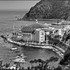 Catalina Island love this island