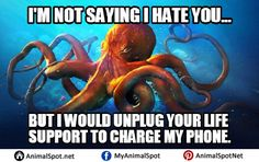 Images of Octopus Memes Funny Animal Memes, Funny Animals, Octopus Images, Davy Jones, Marine Biology, How To Find Out, Sayings, Digital, Life