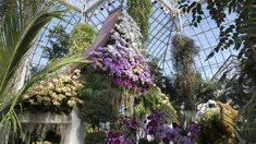 As the New York Times recently reported, the New York Botanical Garden-- one of the oldest institutions on the New York culture map-- recently hired its first female president, 58-year-oldCarrie Rebora Barratt, who comes to the organization from the Metropolitan Museum of Art. At a time when #MeToo and the politics