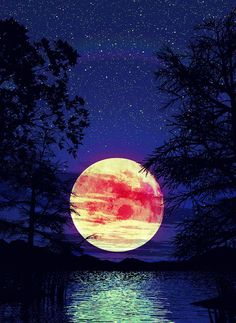 M/M 4 - under the purple moon, the goddess of spirit has arrived! iphone wallpaper - purple night sky with white full moon and black trees Moon Pictures, Pretty Pictures, Cool Photos, Moon Pics, Pretty Pics, Beautiful Moon, Beautiful World, Beautiful Places, Amazing Places