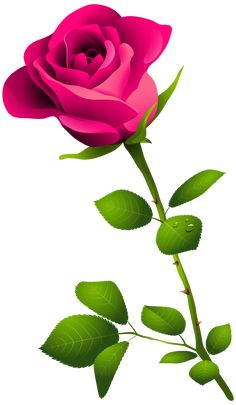 Gardens Discover Clip Art Pink Rose pink rose with Rose Flower Png Red Flower Bouquet Flowers Gif Red Flowers Pretty Flowers Flower Art Rose Clipart Flower Clipart Beautiful Flowers Wallpapers Rose Flower Png, Red Flower Bouquet, Red Flowers, Flower Art, Pink Rose Png, Flower Frame Png, Flowers Gif, Rose Clipart, Flower Clipart