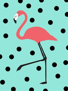 Painting Options Offered via Canvas & Conversation Mobile Art Parties-Evansville, IN. Connect via link. Flamingo Art, Pink Flamingos, Mobile Art, Pink Bird, Art Party, Pattern Wallpaper, Cute Wallpapers, Framed Art Prints, Bunt