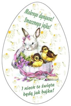 Happy Easter, Teddy Bear, Holiday, Animals, Wraps, Happy Easter Day, Vacations, Animales, Animaux