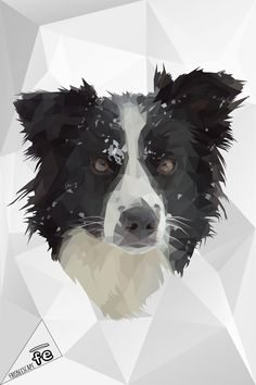 The graphic department of FrisbeEscape has realized these artworks for show his power. The images represent only the sample of possible creation. Contact us for more information at info@frisbeescape.com  Stay tuned. #dog #discdog #disc #frisbee #flydog #border #collie #playdog #mascotas #perro #cane #juegos #gioco