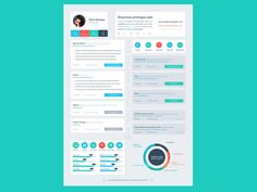 Really like this overall resume design. Great color scheme and great flat layout options. Creative Resume Design, Resume Style, Resume Design, Curriculum Vitae, CV. Resume Flat Design Timeline