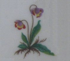 newfoundland provincial flower Future Tattoos, Newfoundland, I Tattoo, Watercolor Tattoo, Tatoos, Piercings, Tattoo Ideas, Ink, Quilts