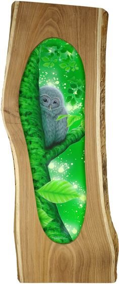 """Shy"" Ural Owls  Memory of Japanese pagoda tree, 2011"