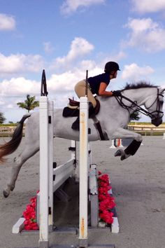 Horse jumping: my passion in life!