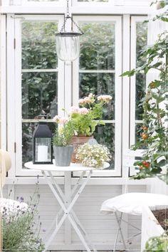 Scandinavian Cottage, Halloween Plates, Clutter Solutions, Workshop Studio, Potting Sheds, Outdoor Sheds, Shed Storage, Gazebo, Home And Garden