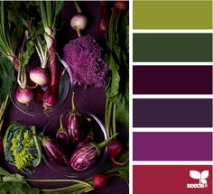 another color palette inspiration