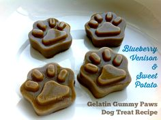 Blueberry, Venison, and Sweet Potato Gummy Paws dog treat recipe