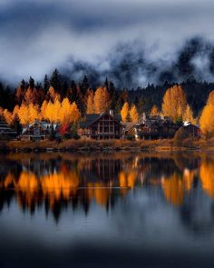 Autumn foliage in Whistler Canada Fast Crazy Nature Deals. Beautiful World, Beautiful Places, Wonderful Places, Beautiful Sunset, Simply Beautiful, Autumn Scenery, Into The Woods, Autumn Cozy, Autumn Fall
