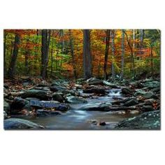 @Overstock - Artist: CATeyesTitle: Hymn at AutumnProduct Type: Gallery-wrapped Canvas Arthttp://www.overstock.com/Home-Garden/CATeyes-Hymn-an-Autumn-Canvas-Art/5728408/product.html?CID=214117 $146.99