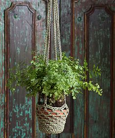 Here's a wonderful way to display a plant using your crochet skill. This easy plant hanger is fast and fun to make with this crochet-able cord that is just right for the job!
