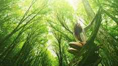 Forest bathing: A practice with roots in Japan gains a foothold in Canada Benefits Of Forest, Wanderlust Yoga, Buddhist Practices, Forest Bathing, Aboriginal People, Yoga Music, Walk In The Woods, Photoshoot Inspiration, How To Do Yoga