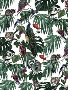 The sumptuous fine art influence and digital print finish bring the charming creatures and birds to life in these delightful designs by Witch and Watchman. Amazonia Light is full of intricate details with peacocks, owls, lemurs and lush tropical foliage set against the off white background. This quality wallpaper benefits from being a paste the wall paper, which means it is incredibly easy to apply and work with whilst decorating. Tropical Wallpaper, Exotic Pets, Designer Wallpaper, Pet Birds, Palm Trees, Monochrome, Digital Prints, Plant Leaves, Witch