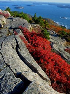 Vibrant autumn view from the top of Champlain Mountain on a sunny October day at Acadia National Park in Maine. Photo: Fiana Shapiro (www.sharetheexperience.org)