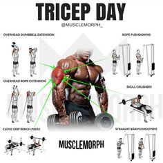 Tricep Day