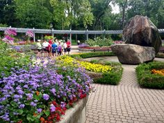 Toronto Gardens: Rosetta McClain Gardens is worth knowing