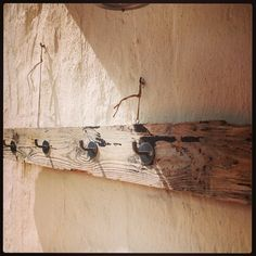 Schwemmholz Hakenleiste #driftwood