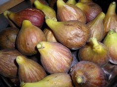 Health 2020, Pear, Fruit, Croissant, Biblia, Crescent Roll, Pears, Crescent Rolls