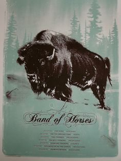 Band of Horses Australia Tour