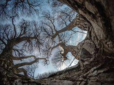 #europe #instafinland #järvenpää #travel #crossfit #traveling #suomi100 #finnishboy #landscape #landscape_lovers #suomi100vuotta #travelphotography #instatravel #instapic #instagramers #visitfinland #thisisfinland #discoverfinland #nature #hiking #follow #followme #finnishmoments#tree #thebestoffinland #nature #instarunners #trailrunning #gym #fitness