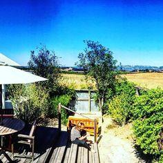 Weekend getaway views from your private patio! Photo credit: @bnews12008 #gorgeous #neverleaving #yesplease #carnerosinn #napavalley #getaway #vacation #wanderlust #vineyards #harvest #beautiful #perfection #weekendvibes #fridayfeeling #checkin #bayarea