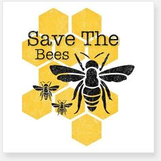 Save The Bees Bumper Stickers ❤ liked on Polyvore featuring home, home decor, office accessories, personalized car stickers, bumble bee stickers, honey bee stickers, car stickers and bumble bee car sticker