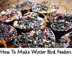 How To Make Winter Bird Feeders