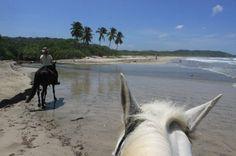 horse trailing behind pelada  - Costa Rica