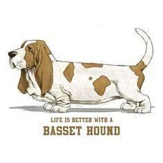 Life Is Better With A Basset Hound Illustration Beagle, Basset Hound Dog, Bloodhound, Dog Rules, Dog Art, Dog Life, Dog Pictures, Dog Breeds, Cute Dogs