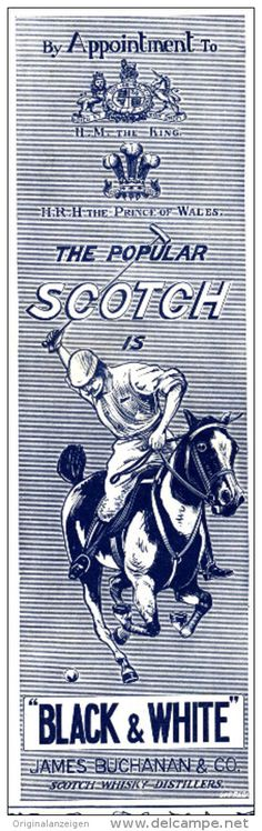 Original - Anzeige / Advertise 1903 : (ENGLISH) BUCHANAN BLACK AND WHITE SCOTCH WHISKY / POLO -  55 x 175 mm