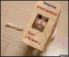 Inserire croccantini | BESTI.it - immagini divertenti, foto, barzellette, video