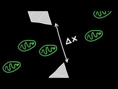 Heisenberg's uncertainty principle http://youtu.be/a8FTr2qMutA