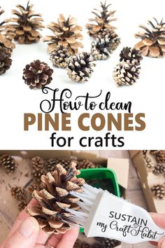 How to Clean Pine Cones for Crafts – Sustain My Craft Habit Diy And Crafts Sewing, Crafts For Kids, Healthy Foods To Eat, Healthy Dinner Recipes, Pine Cone Decorations, Pinecone Wedding Decorations, Pinecone Decor, Pinecone Ornaments, Do It Yourself Organization