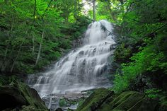 12) Angel Falls, Falls Run in Loyalsock State Forest, Sullivan County