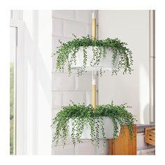 34 New ideas bathroom plants ikea hanging planters Diy Plants, Hanging, Bathroom Plants, Potted Plants, Beautiful Vase, Hanging Plants Diy, Hanging Plants, Artificial Flowers, Ikea