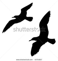 Google Afbeeldingen resultaat voor http://image.shutterstock.com/display_pic_with_logo/100881/100881,1263829555,14/stock-vector-vector-silhouette-of-the-sea-gull-on-white-background-44754907.jpg