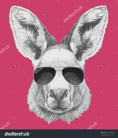 Find Portrait Kangaroo Sunglasses Hand Drawn Illustration stock images in HD and millions of other royalty-free stock photos, illustrations and vectors in the Shutterstock collection.