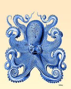 Cool print series for the half bathroom.. Vintage Octopus 4 Front Blue, Octopus print Nautical print beach house decor wall art art print poster digital nautical decor bathroom decor