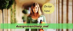 Get your custom assignment papers at low price