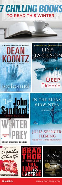 7 mysteries and thrillers to read this winter, including books from Stephen King and Dean Koontz.