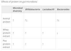 What makes gut bacteria to grow?