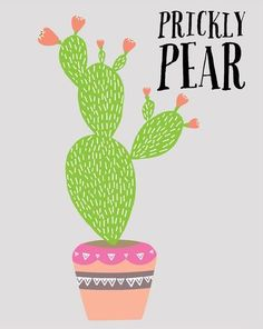 'Prickly Pear' by Lucy Darling