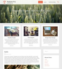 Radiate is a free WordPress theme with a clean & minimal design, suits best for magazines/blogs. Comes with a responsive layout to make your site look awesome in every device & browsers.