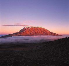 Mt Kilimanjaro. A dream of mine & Jeff's!